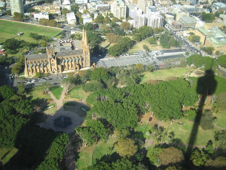 A magical view of Sydney, from Sydney Tower. This view is looking east over Hyde Park and St Marys Cathedral