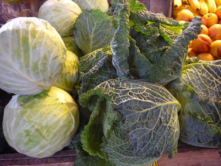 Szeptemberben el lehet kezdeni az áttelelő zöldségek vetését. Kedvező körülmények esetén az ősszel elvetett növények a tél beállta előtt kicsíráznak és megerősödnek. Télen az életfolyamataik lelassulnak, majd áttelelés után a növekedés folytatódik. Ilyen áttelelésre alkalmas az áttelelő kelkáposzta is. http://kertlap.hu/attelelo-kelkaposzta/