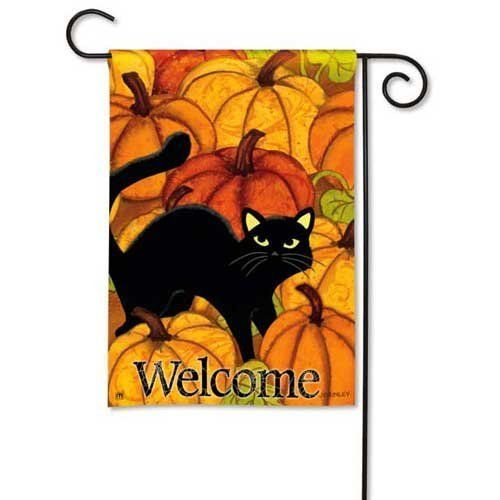 """Black Cat in Pumpkin Patch Halloween Garden Flag by BreezeArt. $10.95. Silky Soft, Fade and Mildew Resistant SolarSilk Fabric.. Hand wash, cold water, mild soap.. Buy direct from Flags On A Stick and save on all your decorative flags today!. BreezeArt Decorative Garden Flag Dimensions: 12.5"""" x 18"""".. PUMPKIN PATCH BreezeArt® Garden Flag Fly a flag that is simply better. BreezeArt Premium Decorative Flags® by Magnet Works Ltd. have set a new standard in quality and attrac..."""
