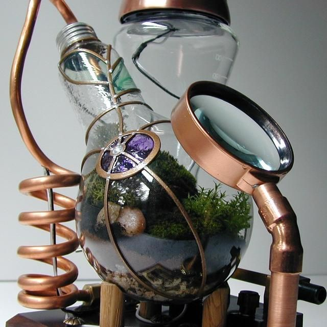 Light bulb terrarium- displaying it with a magnifying glass is brilliant!