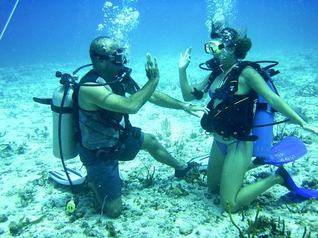 31 best images about scuba on pinterest the 20s snorkeling and underwater - Cozumel dive packages ...