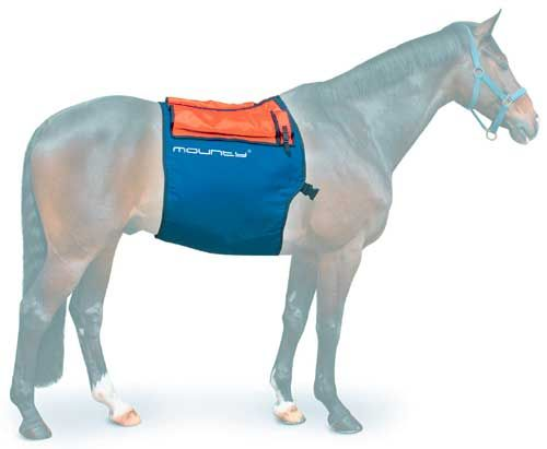 8 Best Horse Therapy Products Images On Pinterest Horse