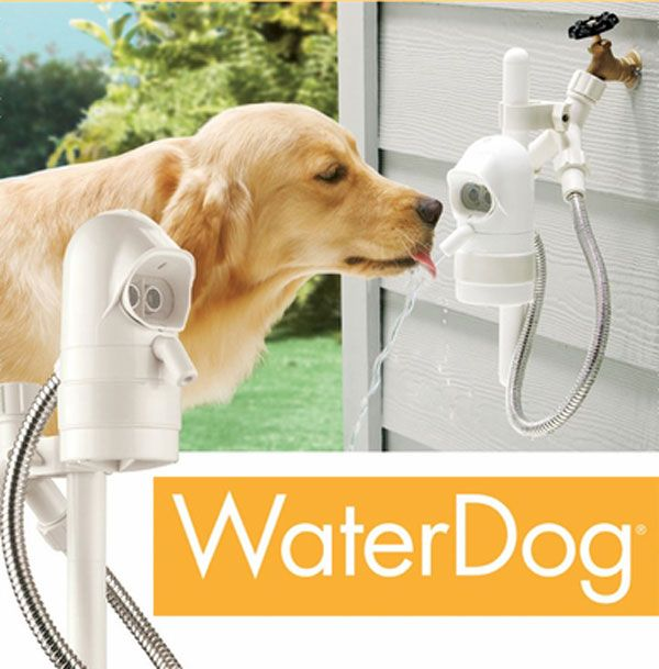 contech waterdog automatic pet outdoor pet fountain the water dog automatic outdoor drinking fountain lets your dog help itself to fresh water sou2026
