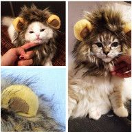Funny Furry Pet Hat Costume Lion Mane Wig For Cat Halloween Dress Up Party AN24