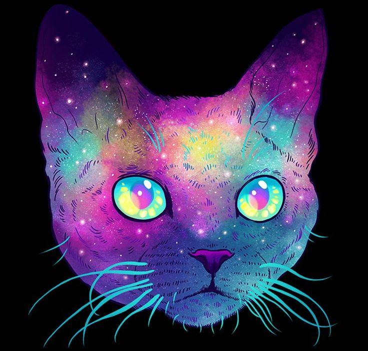 """O artista coreano Jen Bartel mostra através de sua série """"Galactic Cats and Endangered Species"""" um universo explosivo e altamente colorido."""