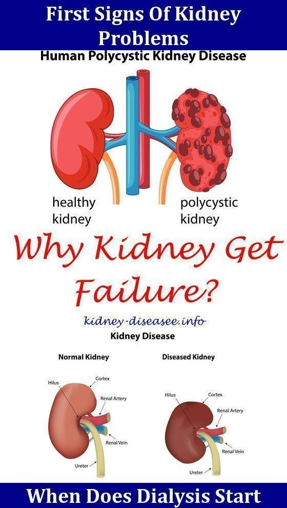 Nutrition For Kidney Health,kidney disease bad breath.Kidney Stones ...
