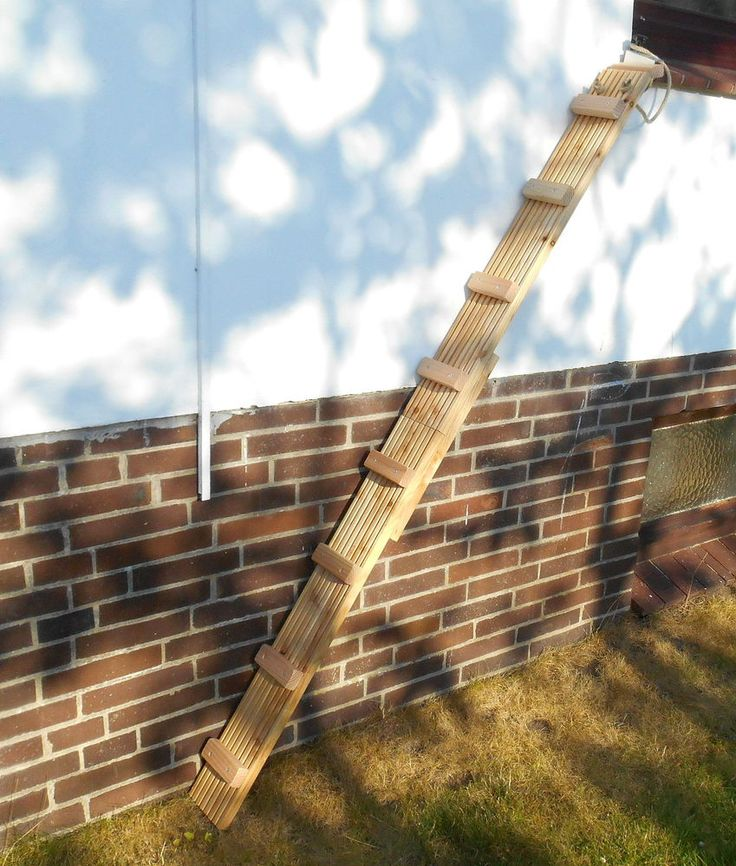 Sehr stabile Katzenleiter /Katzentreppe 3,50 Meter lang aus Douglasie Holz (450) | Haustierbedarf, Katzen, Kratzbäume & Möbel | eBay!