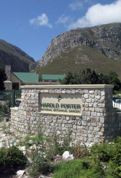 Harold Porter National Botanical Gardens in Betty's Bay, South Africa.