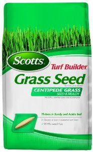 Scotts 18365 Turf Builder Centipede Grass Seed and Mulch, 5-Pound by Scotts. $27.66. 99.9% weed free. Thrives in sandy and acidic soil. Ideal for coastal Southern regions. Grows a low maintenance lawn. Scotts Turf Builder Centipede Grass Seed & Mulch 5LB, Grows a low maintenance lawn. Thrives in sandy and acidic soil. 99.9% weed free.