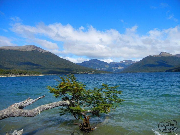 """""""Assim como eu, o lago não era todo mar, mas, por ora sentia-se como o mar, balançando forte a árvore que ali insistia em descansar"""""""
