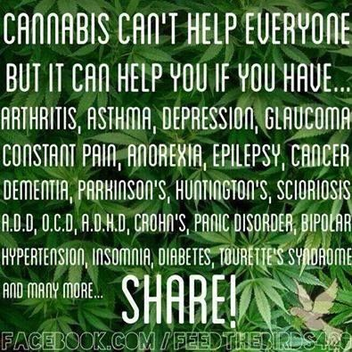 Me: Chronic Pain, Endometriosis, Type 1 Diabetes, Fibromyalgia, Rheumatoid Arthritis, Ménière's Disease, which also causes more pain, swelling, inflammation, depression, anxiety, migraines from light sensitivity, disorientation, vertigo, chronic fatigue....the list goes on. Legalize and cure! If not cure then help millions of people in pain stop having to take pain medication that causes more harm than good, and is highly addictive especially to those who get addicted easily. Spread the…