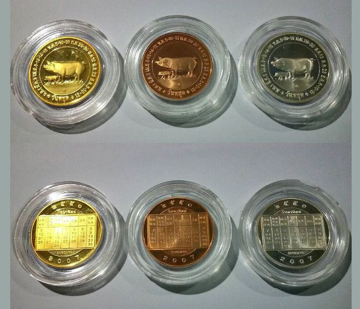 Coins Collectible Thai. Holiday year of the Pig. Set x3 Gold, Silver, Bronze