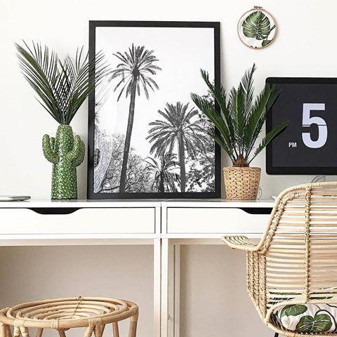 Plamen-Prints, Kaktus-Vase und Grünpflanzen: Für etwas Wüsten-Feeling müssen Sie nicht gleich in den Urlaub fliegen. Sie können Ihr Interieur auch einfach mit Vase MEGAN auf Vordermann bringen. Das witzige Kaktus-Design setzt jede Blume gekonnt in Szene und kommt vor allem auf der Fensterbank zur Geltung, wo Sie selbst von außen etwas von dem süßen Design haben.   @sophiagaleria