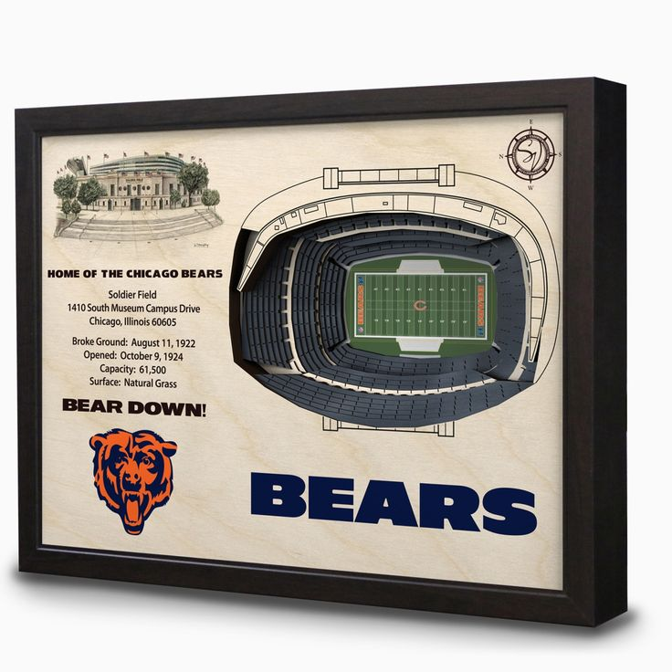 Chicago Bears Soldier Field 3D View Wall Art