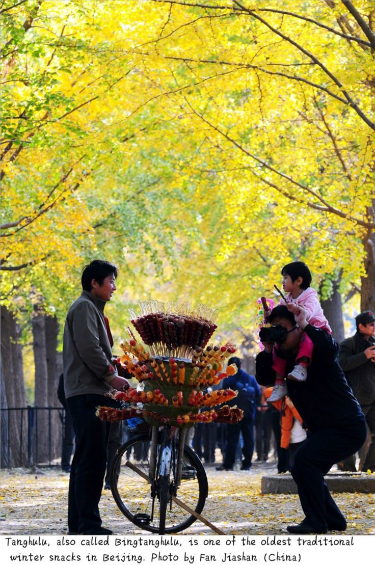 In #Beijing, a typical winter scene is walking down Gingko Boulevard while eating Bingtanghulu, traditional winter snacks of Beijing. via TW by Stories Of Beijing ‏@StoryOfBeijing