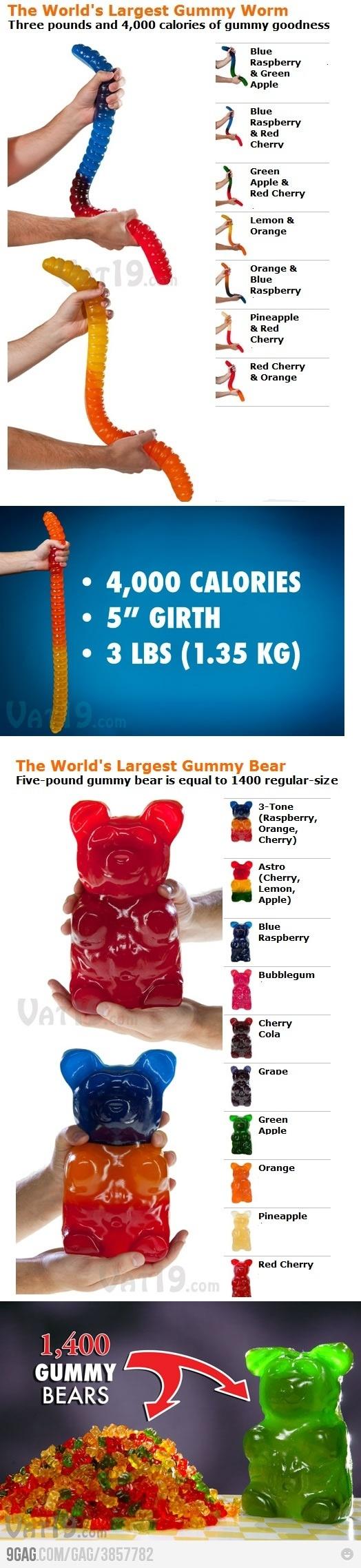 world's largest gummy worm!