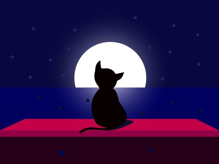 Cat @Night by Ana Hoxha