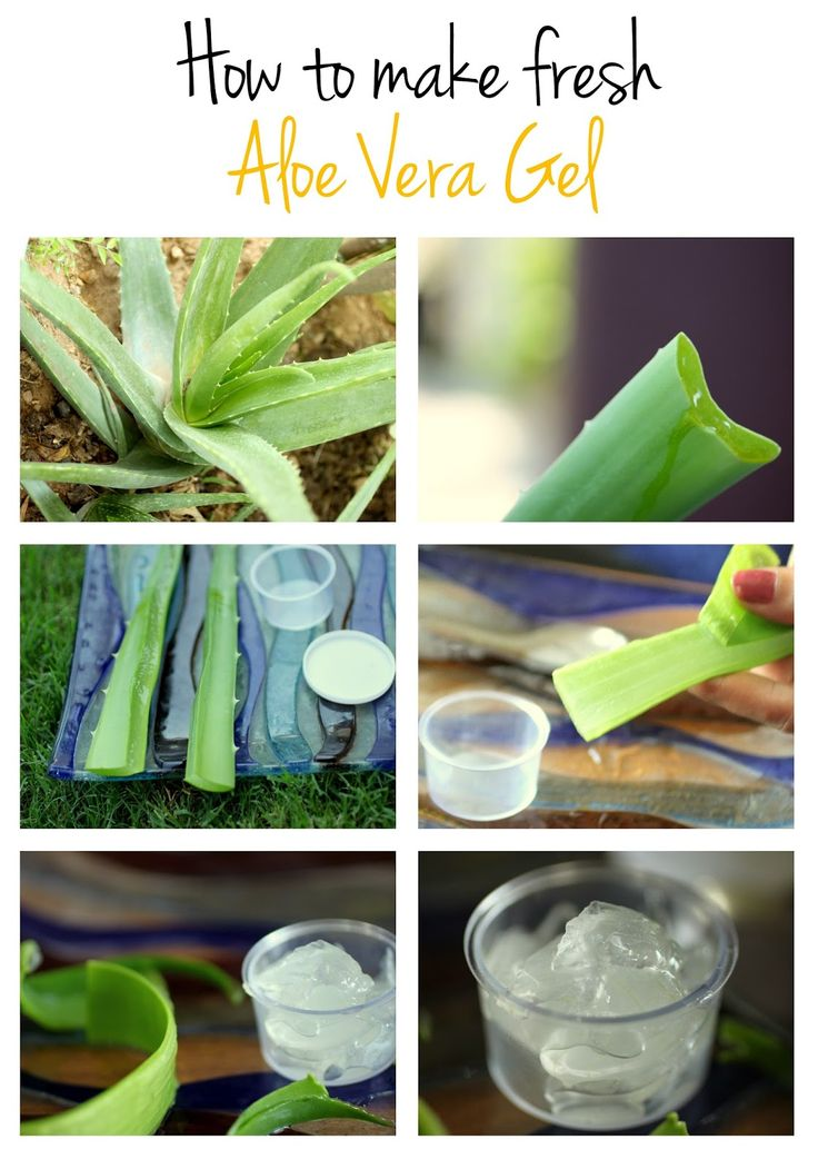 It's funny how we find it convenient to just head to a cosmetic store and pay money for chemical based products while the best natural skin care ingredient actually grows in our backyard.  The secret is in the transparent, juicy substance contained in the thick leaves of Aloe Vera, the Aloe Vera Gel.So lets see how you can make fresh Aloe Vera gel from the plant