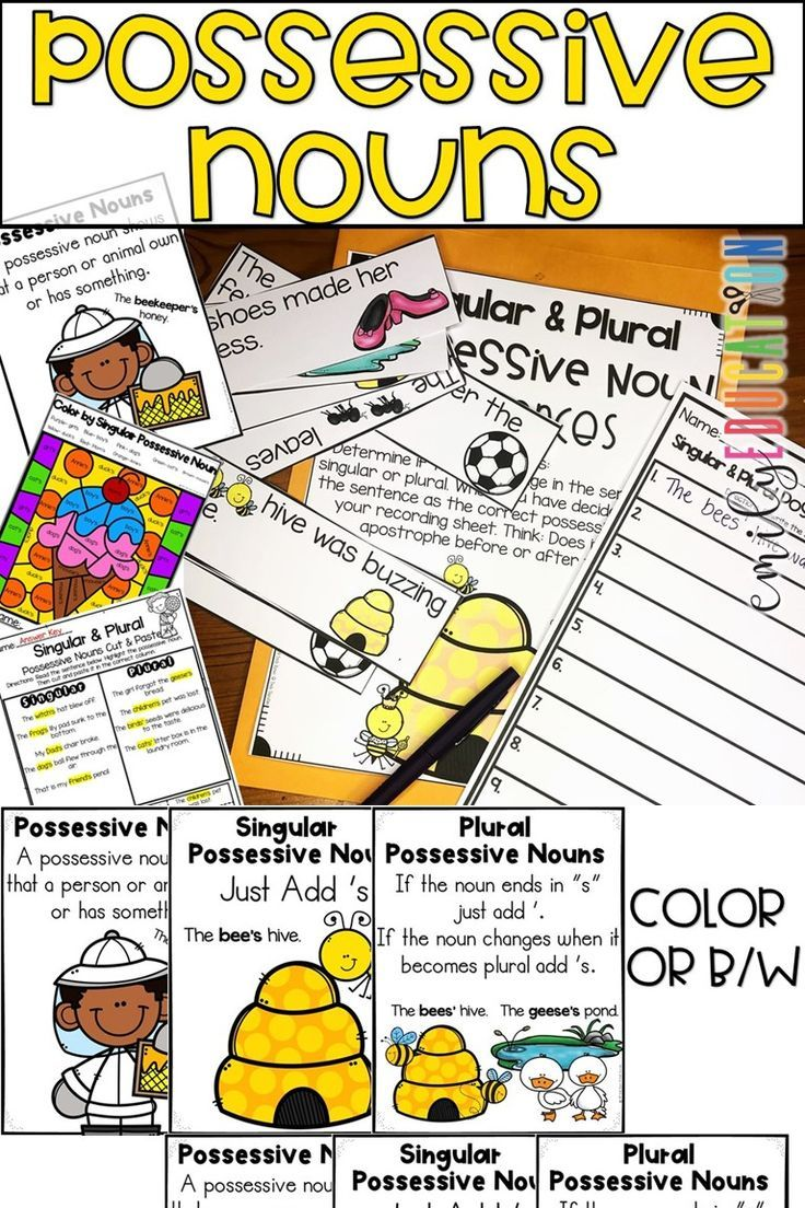 small resolution of Singular and Plural Possessive Noun Activities   Nouns activities