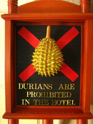 Durian , il frutto piu' grande , maleodorante e buono del sud-est asiatico - http://www.provarciegratis.com/cucina-thailandese/frutti-vegetali-tropicali/durian/ - by  Pier Sottojox -  #durian #durianthailandia #fruttathai #fruttatropicale