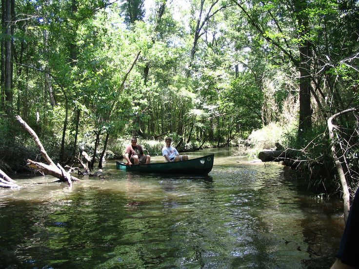 Canoeing in Tickfaw, located in Tangipahoa Parish, is a time-honored tradition. The bayous and waterways are shallow enough that most parts only have a few feet of water making it great for a family trip. #onlyonthenorthshore