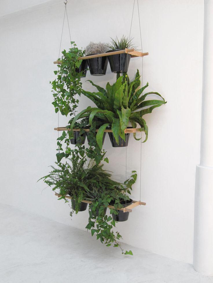 Best 25 plant shelves ideas on pinterest for Indoor plant ideas