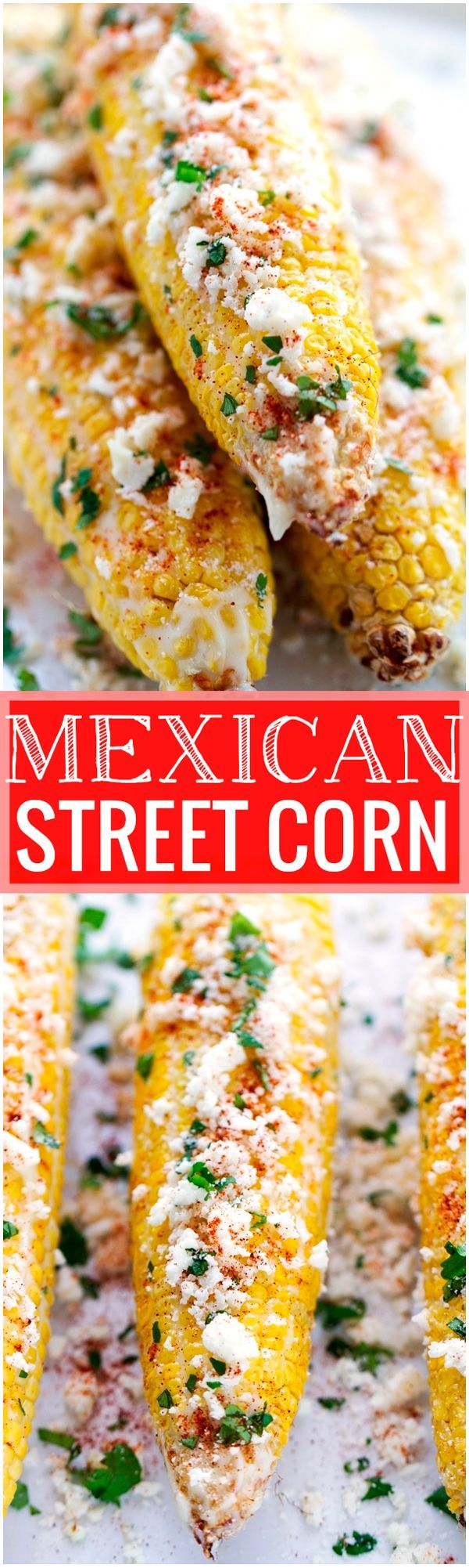 Mexican Street Corn - perfect to serve at barbecues and on Cinco de Mayo! Tender corn with garlic mayo, lime juice, cotija cheese, and cilantro!  #cornonthecob #mexicanstreetcorn #cincodemayo | Littlespicejar.com