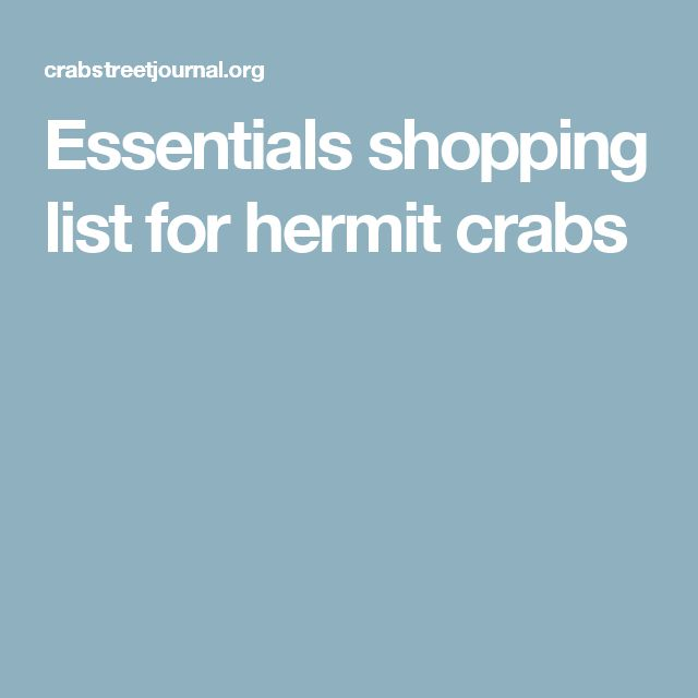 Essentials shopping list for hermit crabs