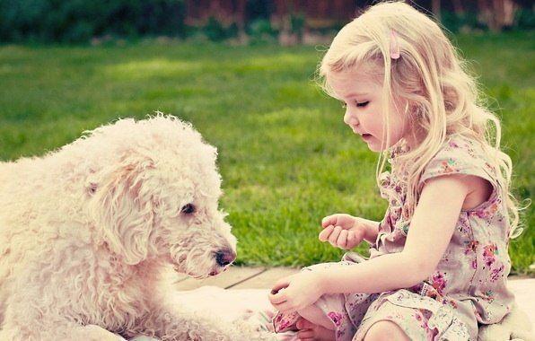Подобное тянется к подобному. Если хочешь окружить себя любящими,счастливыми, добрыми людьми, стань таким сам.