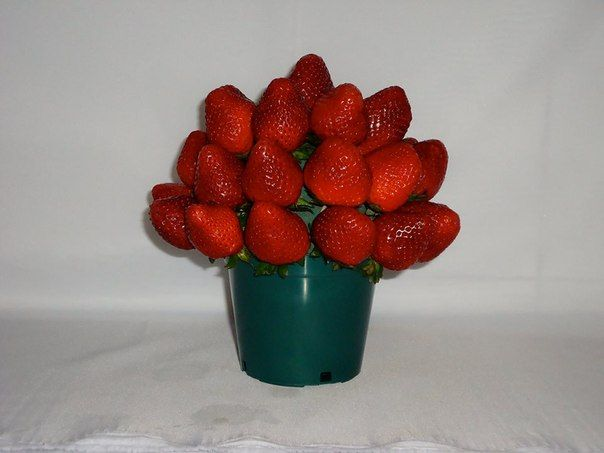 ROJA TENTACIÓN. Deliciosas fresas frescas. $45.000