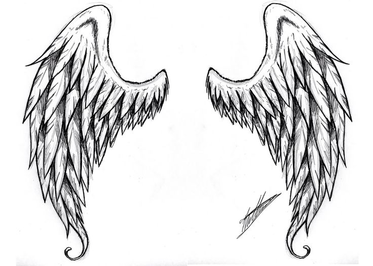 Small+Shooting+Star+Tattoos | angel wings is a must on my back of course