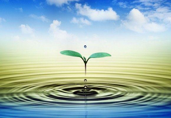 2 lt. suyun içerisine 1/2 (yarım) tatlı kaşığı İngiliz karbonatı ekleyip, gün içerisinde bu suyu içebilirsiniz.