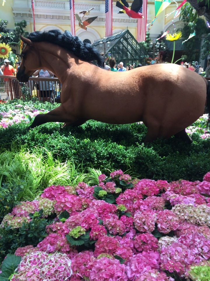 Bellagio Conservatory & Botanical Gardens in Las Vegas, NV