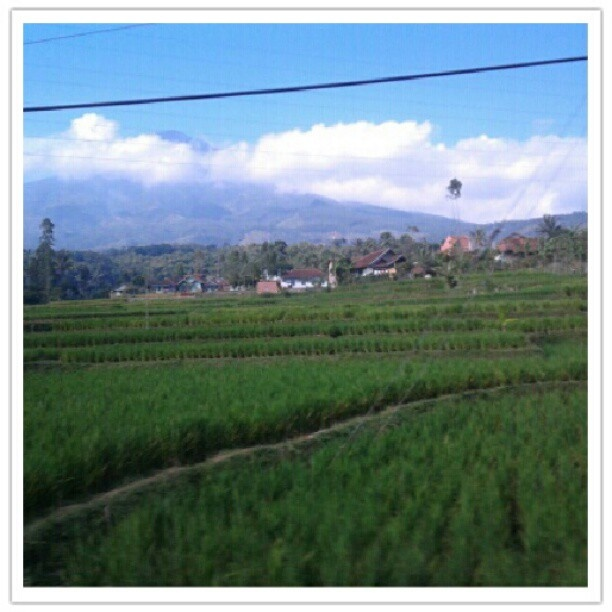 Papandayan Mountain, Garut, Indonesia