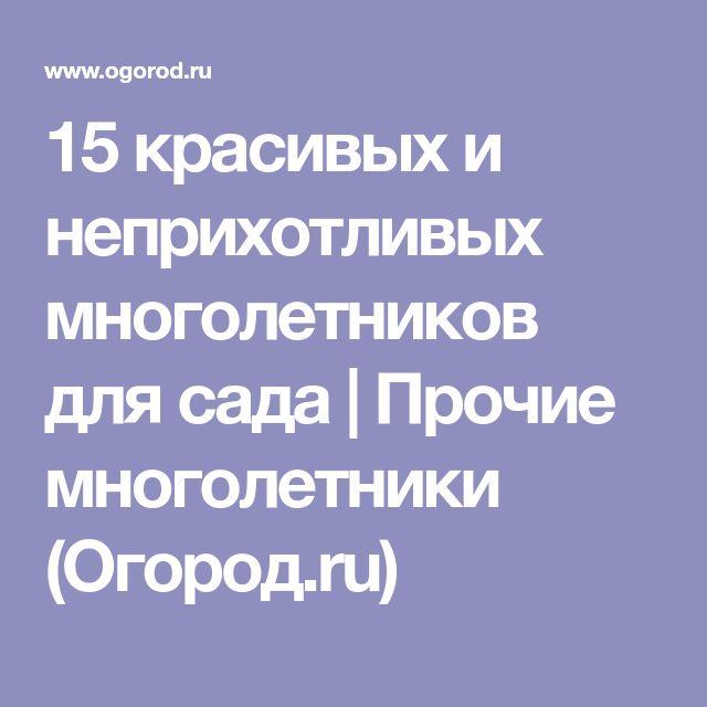 15 красивых и неприхотливых многолетников для сада | Прочие многолетники (Огород.ru)