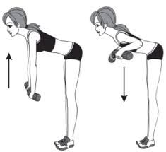 Bildergebnis für Упражнения с гантелями для женщин