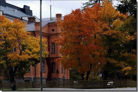 Autumn in Vaasa, Finland