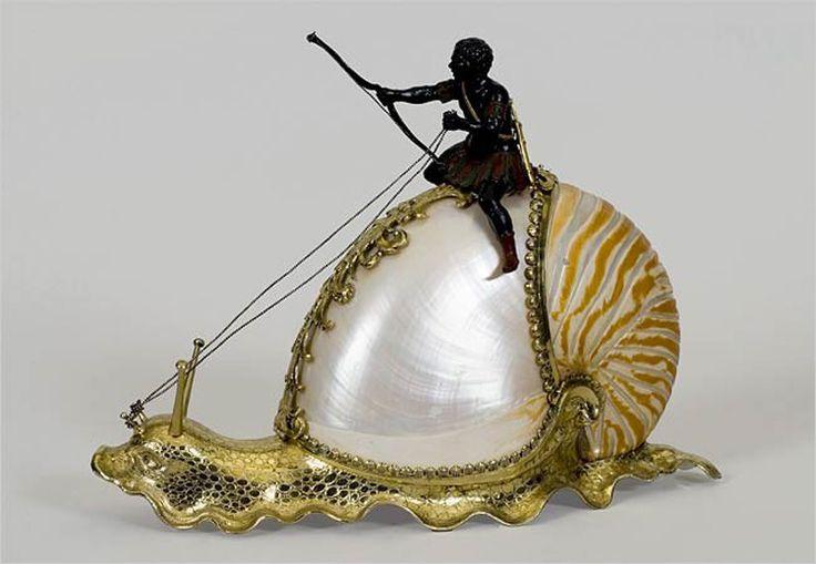 sea snail - Google Search