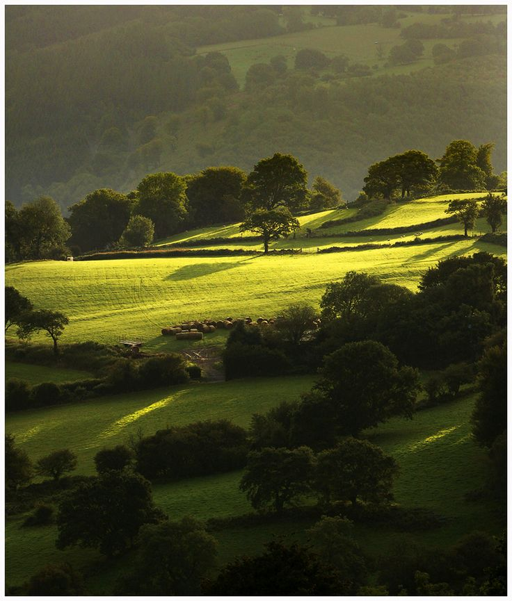 Morning Light II by Alan Coles, via 500px - Can you see the fairies dancing in the first rays of morning light?  I can - almost.  The Lakeland Fells at their magic best.