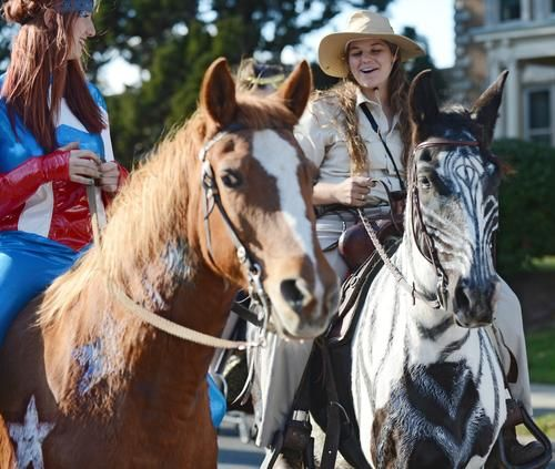 17 Best Images About Equine Drill Team On Pinterest Team Photos Equestrian And Rodeo