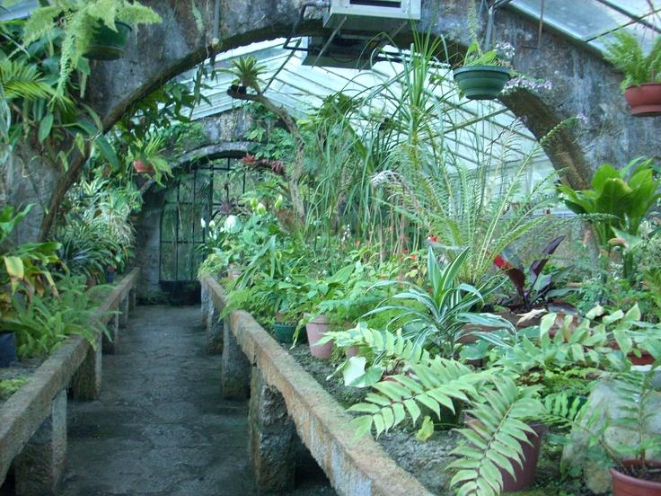 Invernadero de Parque Santa Teresa Uruguay