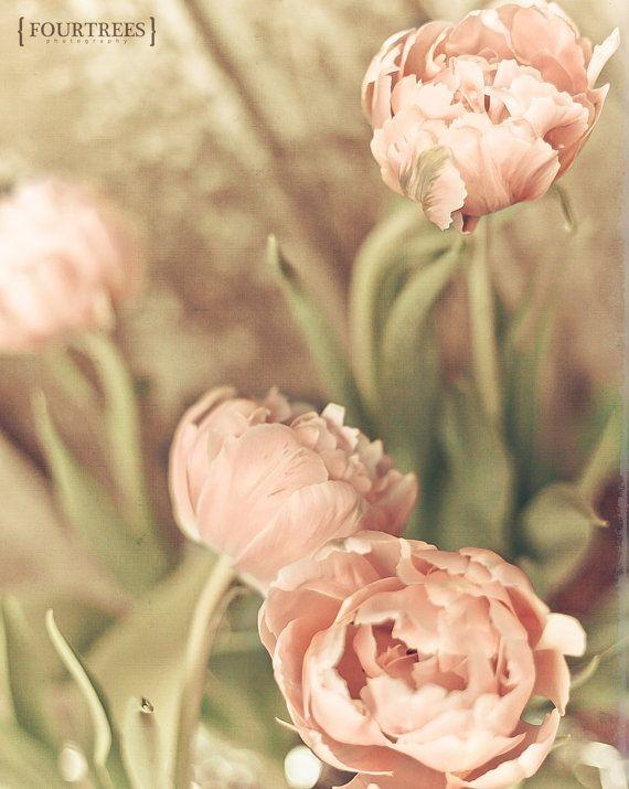 September  8 x 10 bloem floral van FourTreesPhotography op Etsy