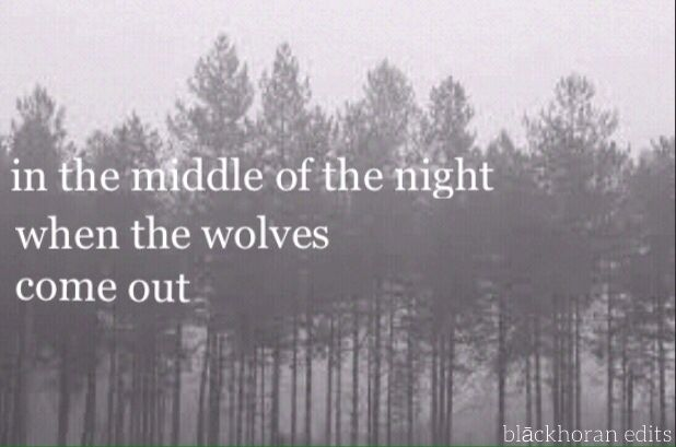 wolves|one direction