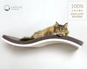Katze-Regal, Wand-Regal, weiße Welle Regal, gebogene Regal, Katzenmöbel, SOFT braun Polster, schwimmende Katze Regal, Wand montiert Barsch
