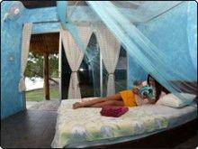 Nomad Adventure Divers Resort (NAD) - Lembeh, Sulawesi