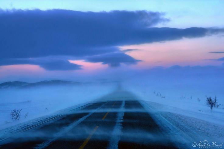 Road Trip - null