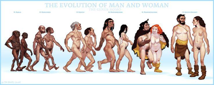 Escala evolutiva del ser humano.