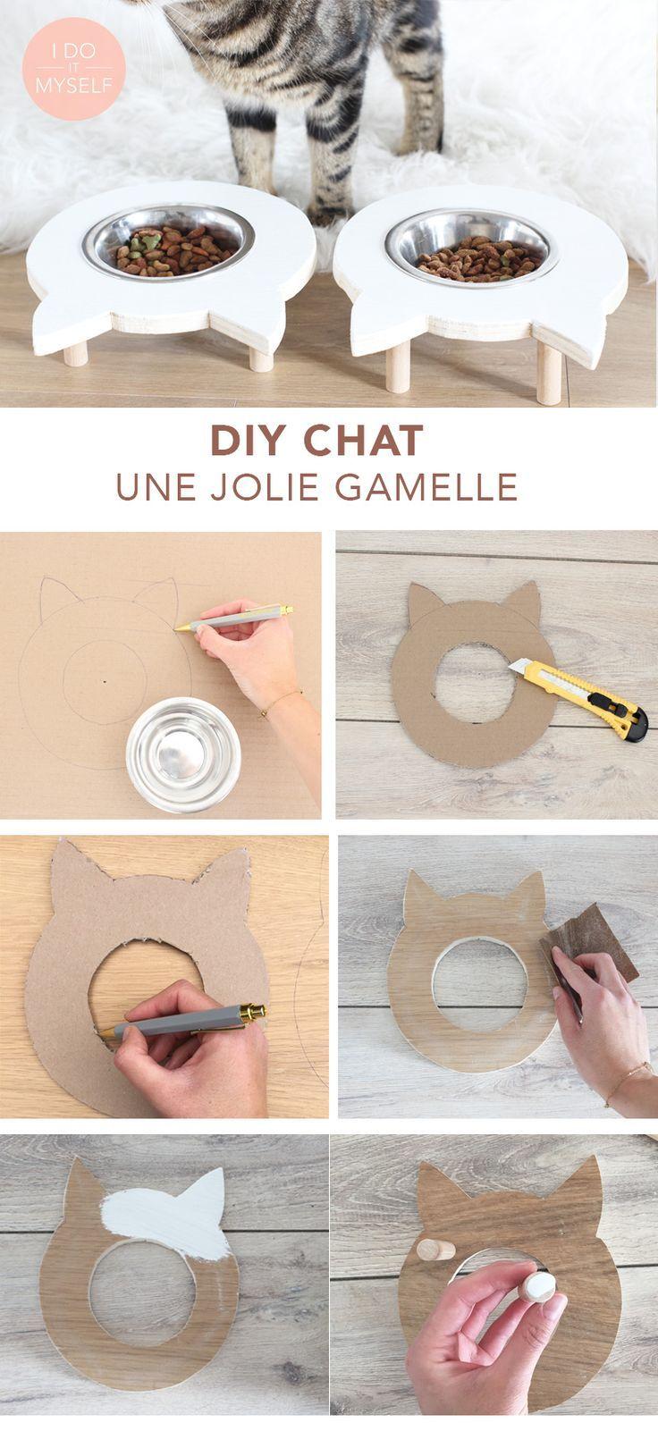 CAT DIY: Create a cute bowl for your cat! DIY CAT: Create a beautiful door … #diyforpets #make #katze #cute …