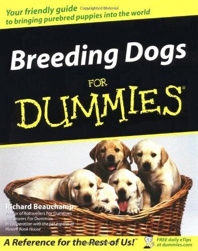 how to read dog racing program