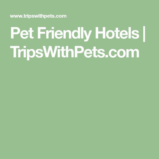 Pet Friendly Hotels   TripsWithPets.com